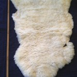 14-226-2 Dorset Horn sheepskin, fleece side, $110
