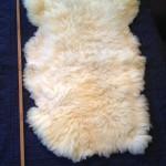14-226-3 Border Leicester/Corriedale cross sheepskin, fleece view, $130