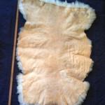 14-226-3 Border Leicester/Corriedale cross sheepskin, tanned side $130