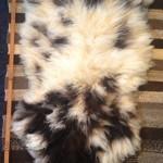 14-151-1 Jacob sheepskin, fleece side, $140