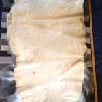 14-582-2 Jacob sheepskin tanned side $175