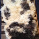 14-582-1 Jacob sheepskin fleece side $175