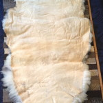 14-582-1 Jacob sheepskin tanned side $175
