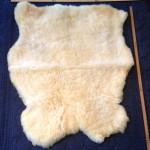 14-396-1 Dorset Horn sheepskin fleece side $100