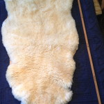 14-396-2 Dorset Horn sheepskin fleece side $125